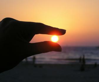krullen beschermen zon